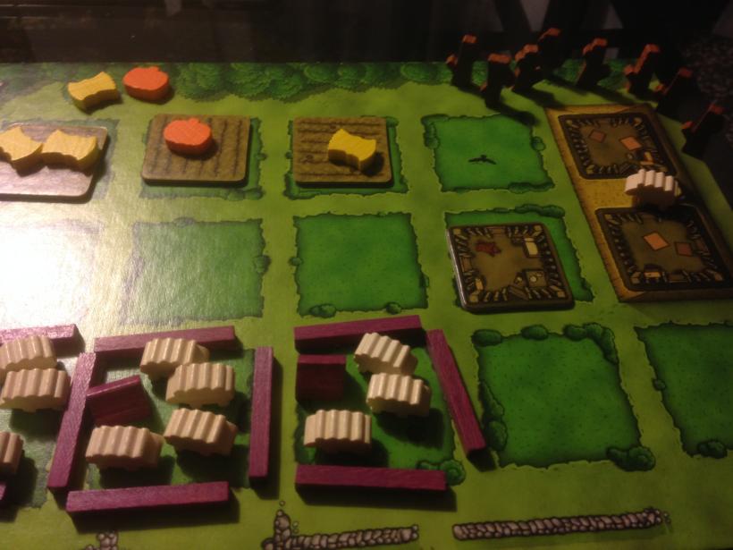 Agricola nuova edizione: plancia giocatore
