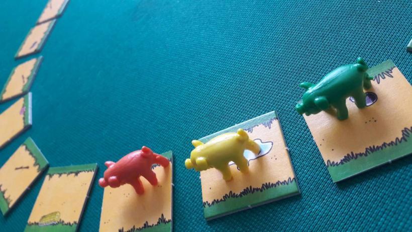 Maiali al Galoppo: albicoso, maialino coraggioso