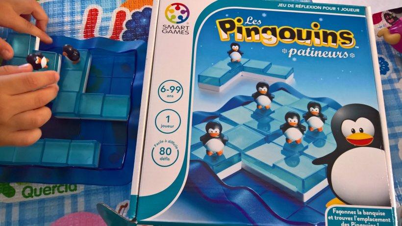 Pinguini Pattinatori: copertina