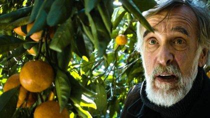 Tangerines (Mandariinid) di Zaza Urushadze