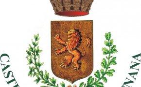 stemma Castelnuovo Garfagnana