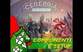 Cerebria - Componenti e setup