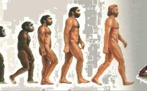 evoluzione goblin