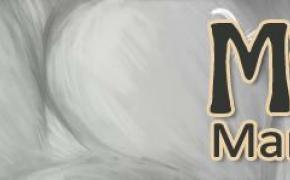 Mister Neko: giochi a Firenze