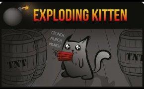 Exploding Kitten: recensione e tutorial con i gattini più esplosivi del mondo!♥️