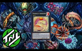 Paleozoic Frog Deck Profile | Post Banned List | YuGiOh!