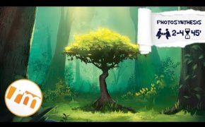 Recensioni Minute [180] - (Anteprima) Photosynthesis