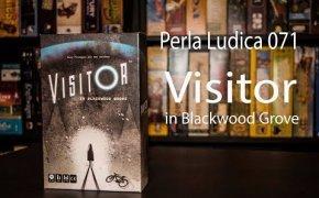 Perla Ludica 071 - Visitor in Blackwood Grove
