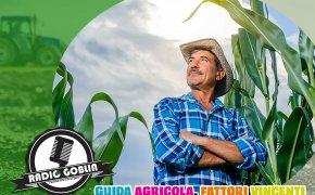 Podcast: Guida Agricola, fattori vincenti