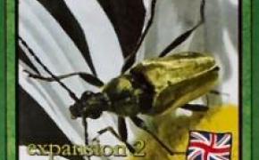Atta Ants: Expansion 2