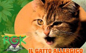 Podcast: RGK #3: il gatto allergico