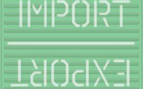 Import/Export copertina