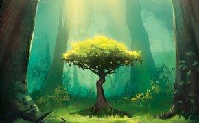 Photosynthesis: copertina