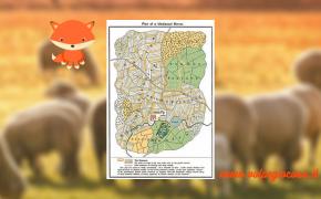 Piazzamento pecore: la non-risposta a un piccolo giochino pasquale