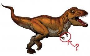 T-Rex: mani
