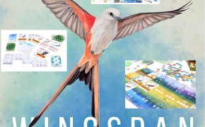 Wingspan: collage di immagini